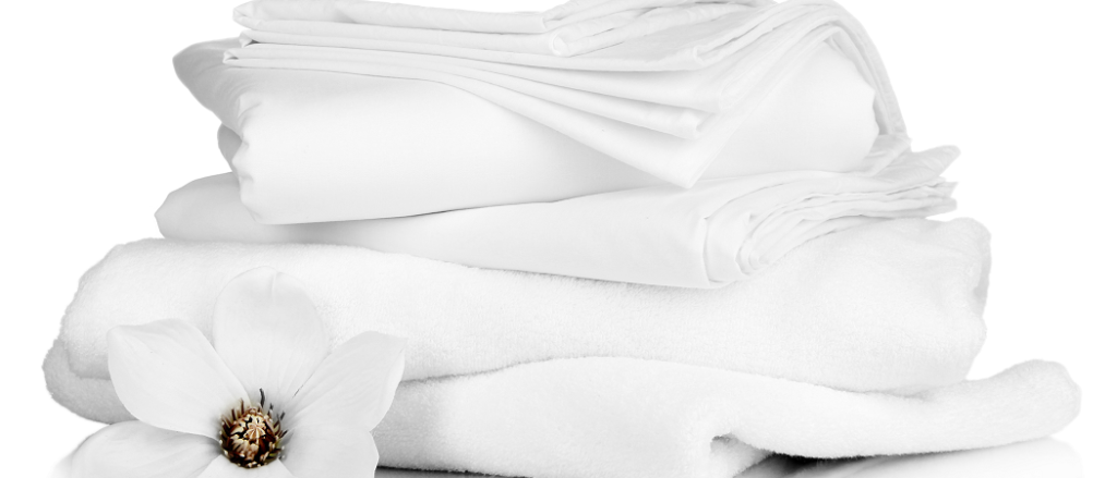 Professional Laundry Services