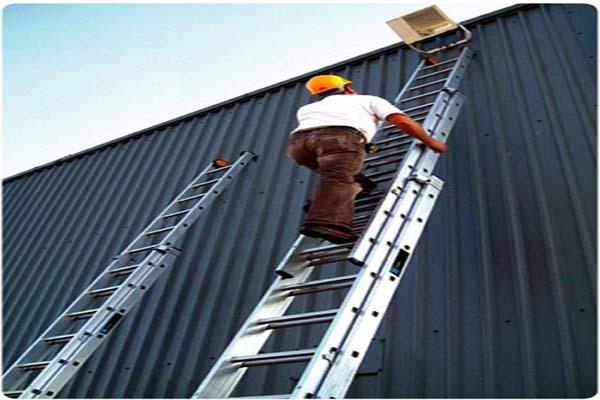 101 on Ladders
